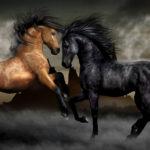 Курьерская Лошадь(Почтовая лошадь)