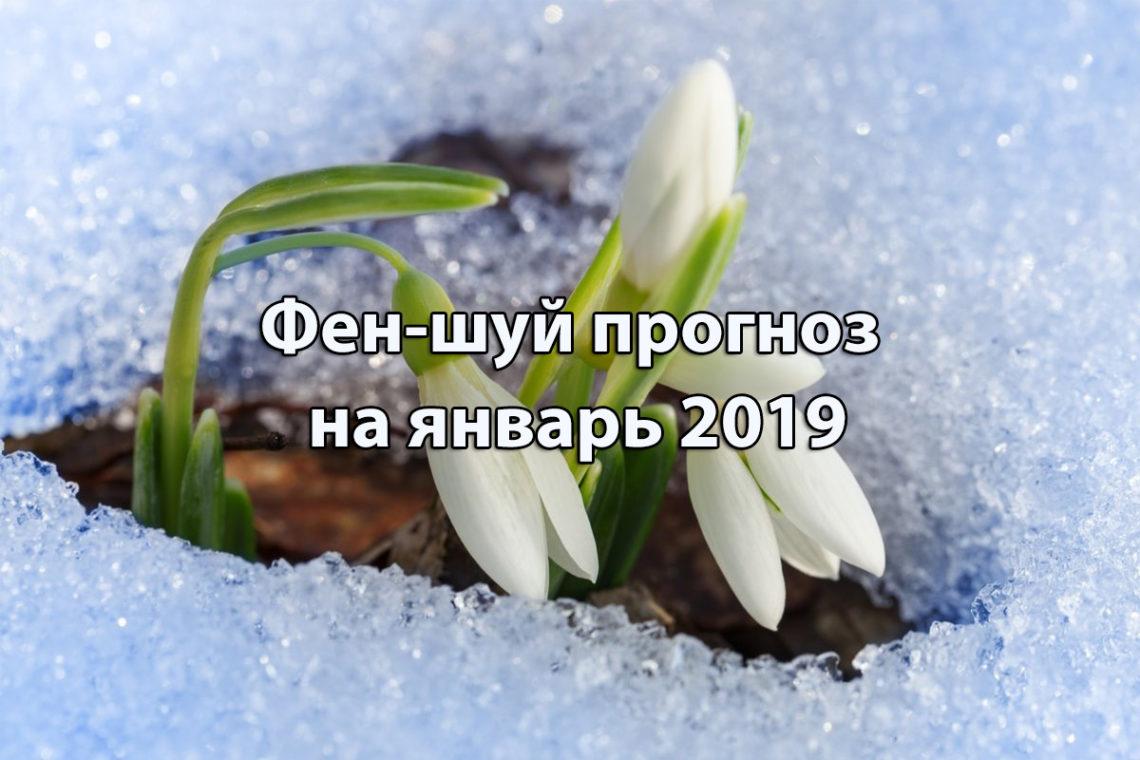 Фен-шуй прогноз на январь 2019